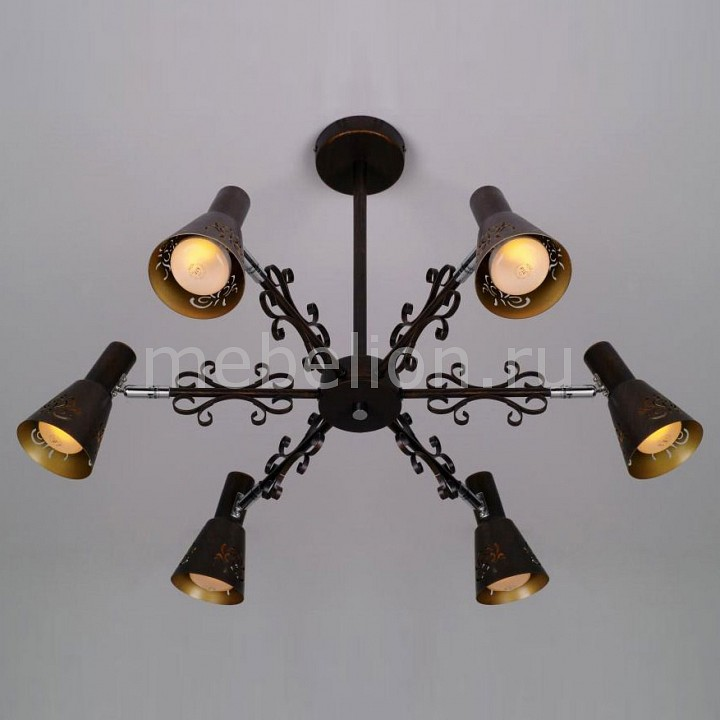 Светильник на штанге Citilux CL529161 Дункан