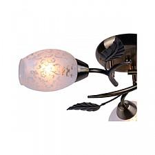 Потолочная люстра Arte Lamp A6157PL-3AB Anetta