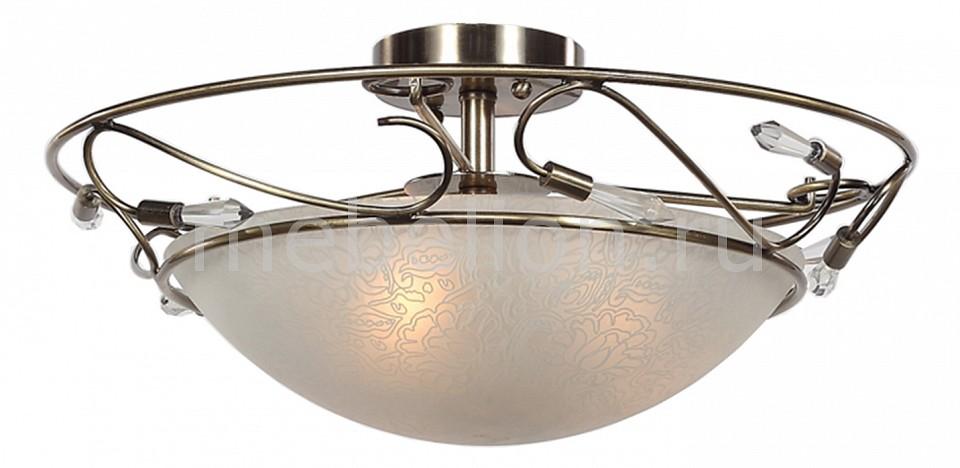 Светильник на штанге ST-Luce SL149.302.03 SL149