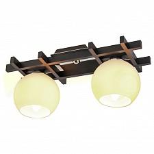 Накладной светильник Виола 196-42-12