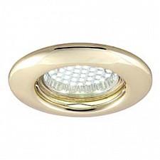 Встраиваемый светильник Praktisch A1203PL-1GO