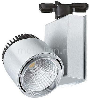 Светильник на штанге Horoz Electric HL829L 018-005-0040 Серебро трековый светодиодный светильник horoz 40w 4200k серебро 018 001 0040 hl834l