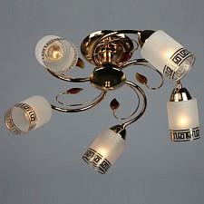 Люстра на штанге OM-368 OML-36817-05