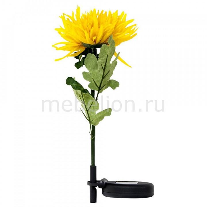 Цветок Астра PL303 06232