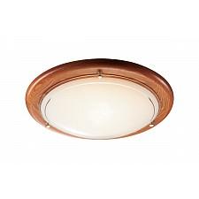 Накладной светильник Riga 226