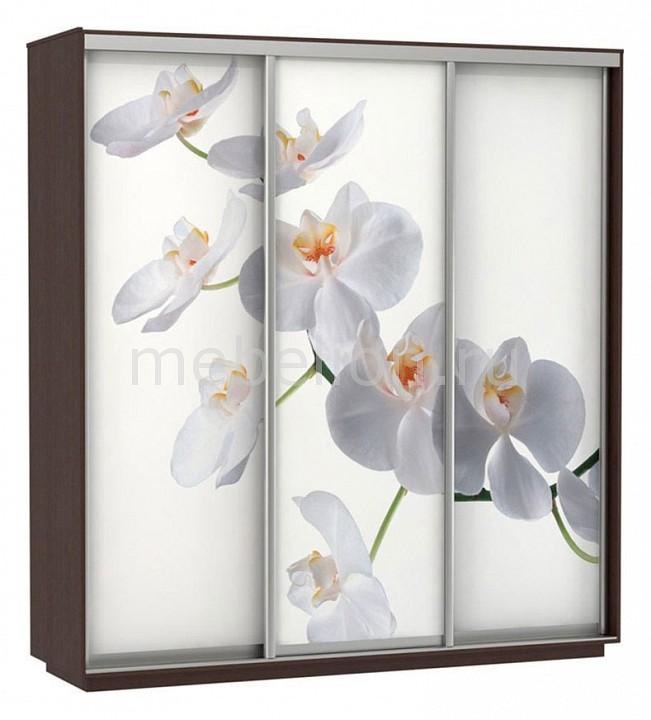 Шкаф-купе E-1 Экспресс Фото 3 Белая орхидея мультирамка мультисердце 7 фото белая
