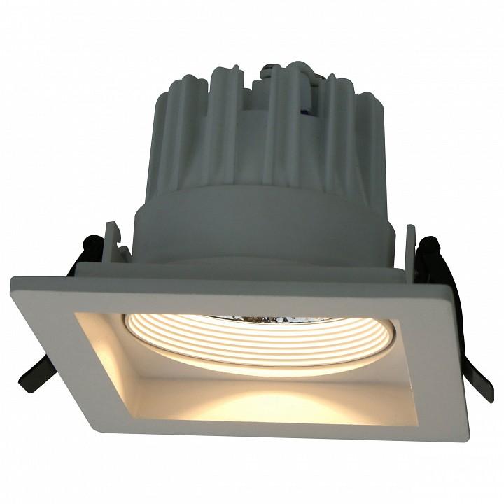 Купить Встраиваемый светильник Privato A7018PL-1WH, Arte Lamp, Италия