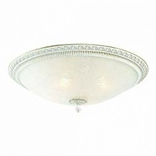 Накладной светильник Fascino SL135.502.04
