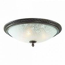 Накладной светильник Fascino SL135.402.04