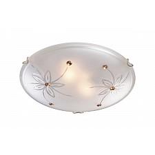 Накладной светильник Sonex 149 Floret