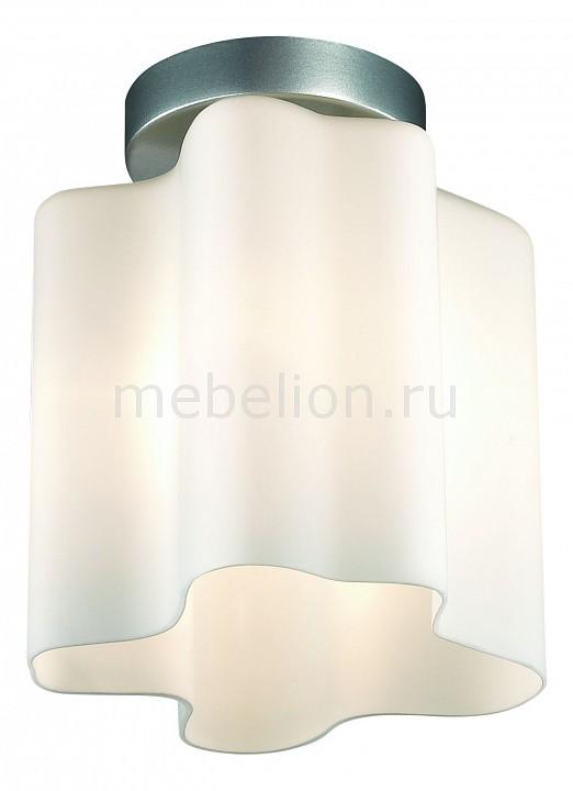 Накладной светильник ST-Luce SL116.502.01 Onde