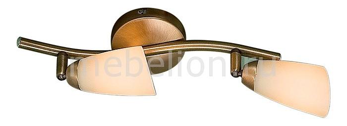 Купить Спот Белла CL501523, Citilux, Дания