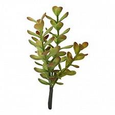 Ветка (21 см) Денежное дерево 58007900