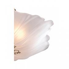 Накладной светильник Odeon Light 2678/4C Corbi