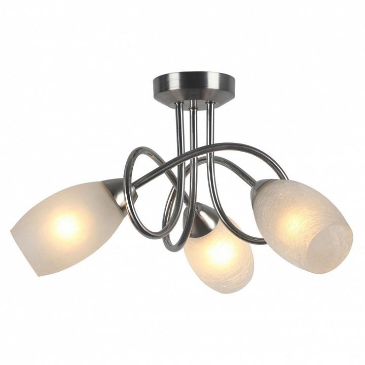 Купить Потолочная люстра Mutti A8616PL-3SS, Arte Lamp, Италия