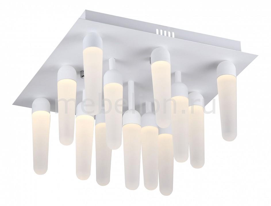 Накладной светильник ST-Luce SL865.502.13 SL865