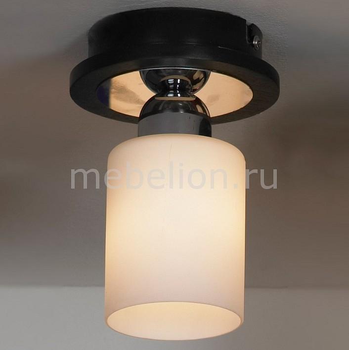 Светильник на штанге Lussole