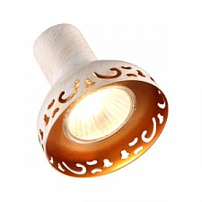 Спот Arte Lamp A5219AP-1WG Focus