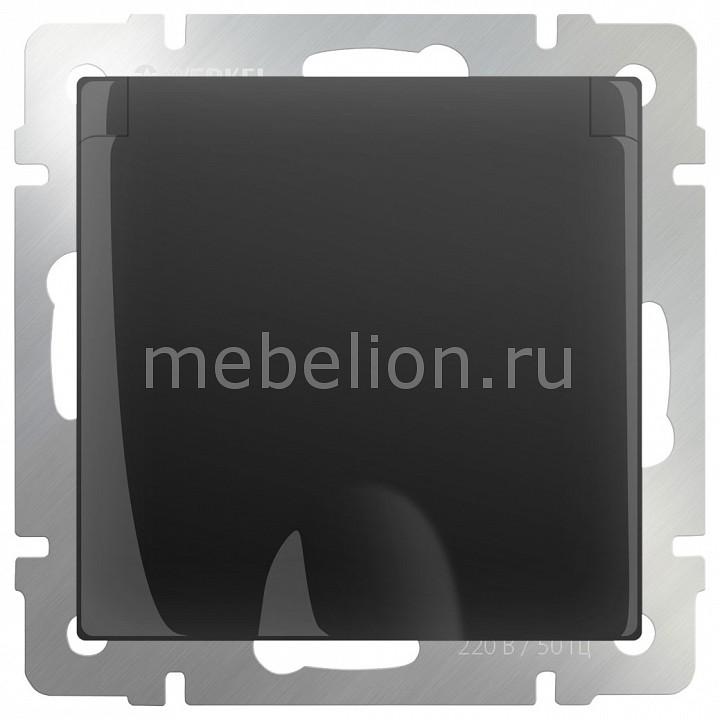 Розетка влагозащищенна с заземлением с крышкой со шторками Werkel , без рамки Черный матовый WL08-SKGSC-01-IP44 розетка abb bjb basic 55 шато 2 разъема с заземлением моноблок цвет чёрный