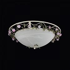 Накладной светильник Lightstar 785530 Aiola