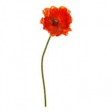 Цветок (42 см) Мак 58014700