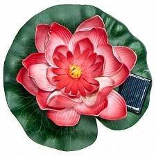 Цветок Кувшинка PL263 06241