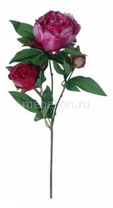 Цветок (70 см) Пион 58016100