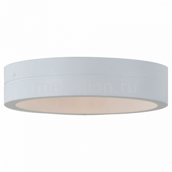 Накладной светильник ST-Luce SL562.501.01 SL562