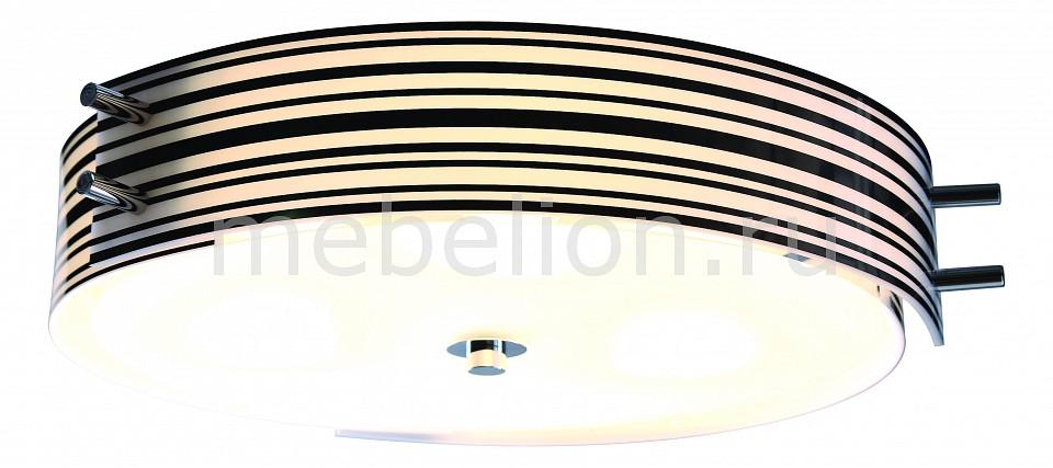 Накладной светильник Heggia SL484.542.06