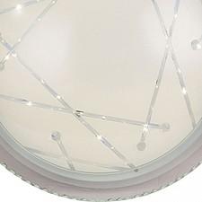 Накладной светильник ST-Luce SL493.512.01 Universale