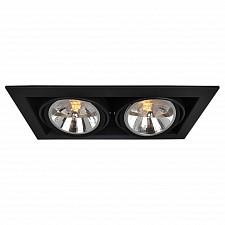 Встраиваемый светильник Arte Lamp A5935PL-2BK Cardani