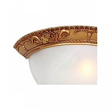 Накладной светильник Favourite 1447-1W Plafond