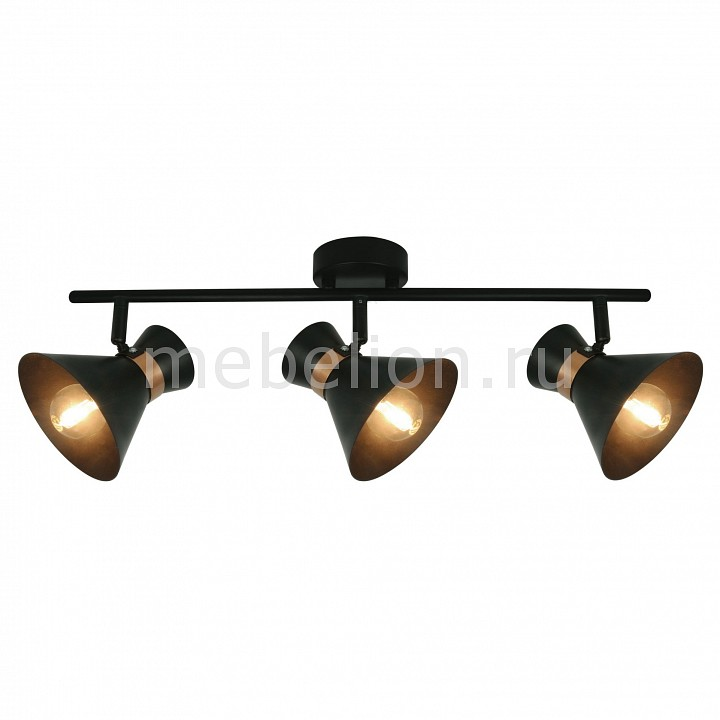Спот Baltimore A1406PL-3BK, Arte Lamp, Италия  - Купить
