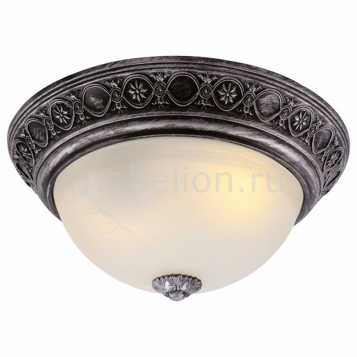 Накладной светильник Arte Lamp A8009PL-2SB Piatti