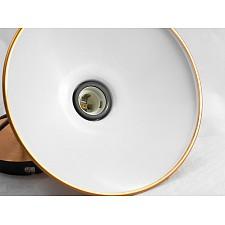 Подвесной светильник Lussole LSL-6806-01 Loft