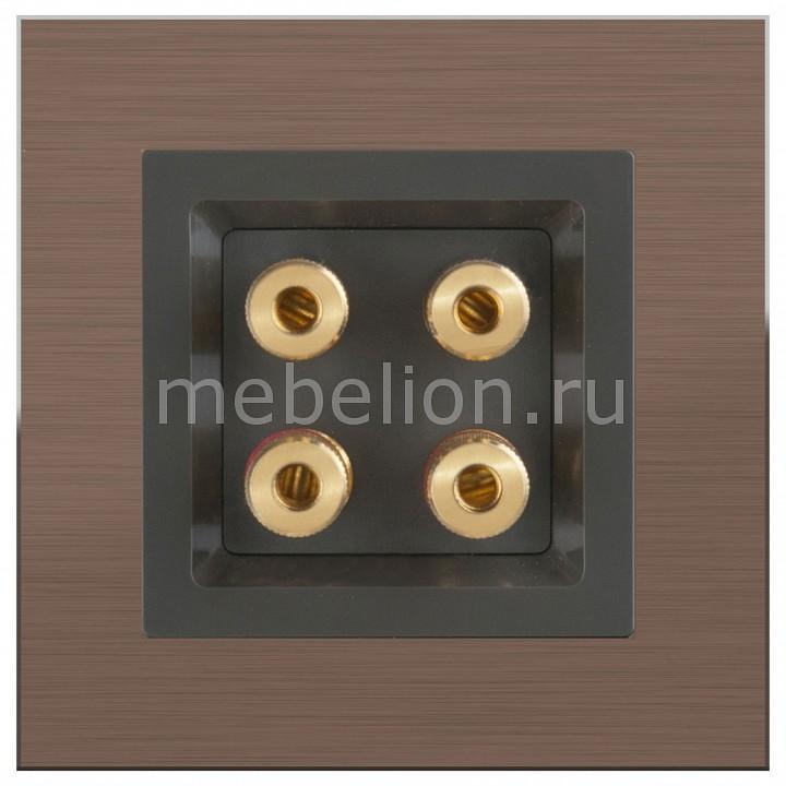 Розетка акустические Werkel Aluminium (Серо-коричневый) WL07-70-11+WL07-AUDIOx4  werkel акустическая розетка х4 серо коричневая wl07 audiox4 4690389059308