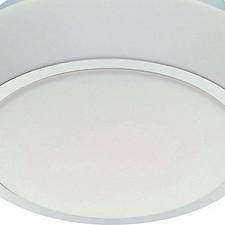 Накладной светильник ST-Luce SL496.502.01 Bango