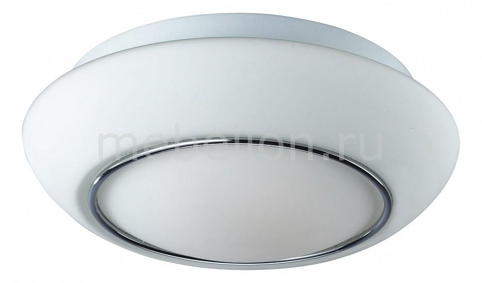 Накладной светильник ST-Luce SL497.502.02 Bango