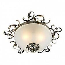 Накладной светильник OML-764 OML-76407-03