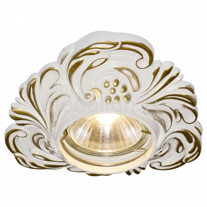 Встраиваемый светильник Arte Lamp A5285PL-1SG Occhio