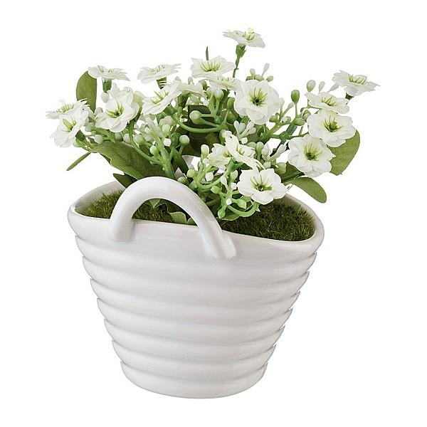 Растение в горшке АРТИ-М (11х9х13 см) Бегония 166-108 art_166-108