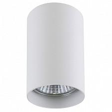 Накладной светильник Lightstar 214436 Rullo