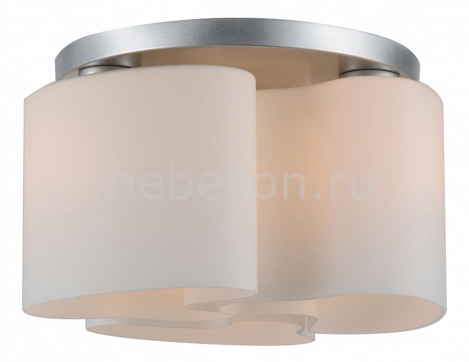 Накладной светильник ST-Luce SL545.502.03 Nuvole