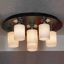 Накладной светильник Caprile LSF-6107-06