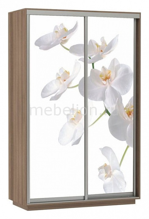 Шкаф-купе E-1 Экспресс Фото 2 Белая орхидея мультирамка мультисердце 7 фото белая