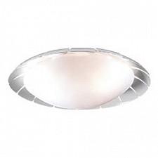 Накладной светильник Zita 2752/3C