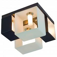 Потолочная люстра Concreto SL536.542.04