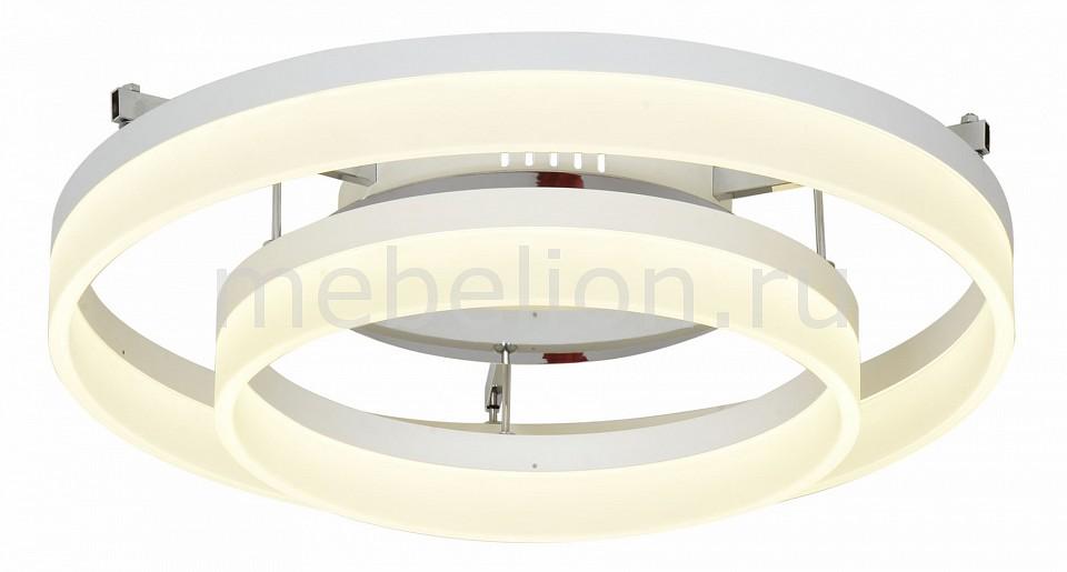 Накладной светильник ST-Luce SL928.502.02 SL928