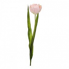 Цветок (57 см) Тюльпан махровый 58014400