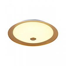 Накладной светильник Maytoni CL815-PT50-G Euler